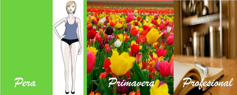 Primavera-profesional-1