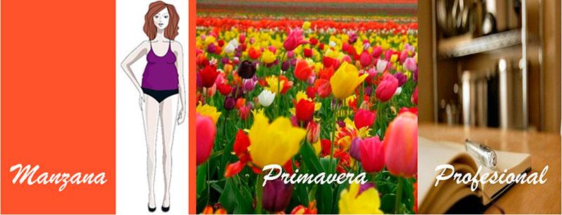 Primavera-profesional-3