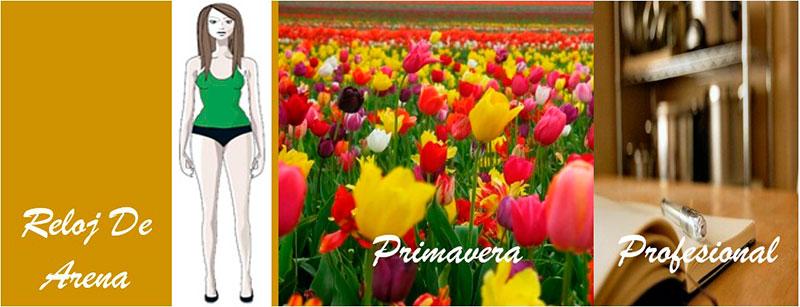 Primavera-profesional-7