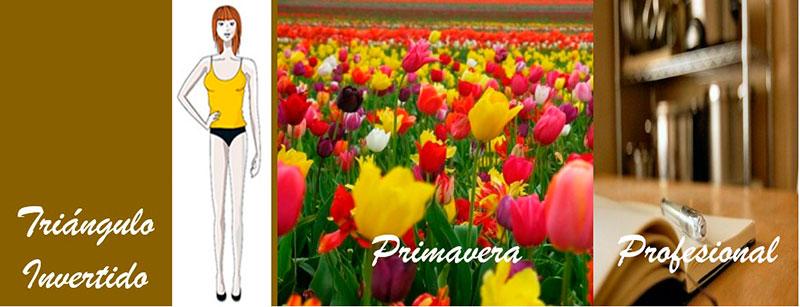 Primavera-profesional-9